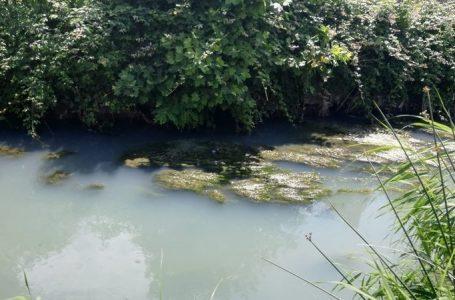 Danni ambientali e sversamenti illeciti sulla costa toscana: firma la petizione per dire basta!