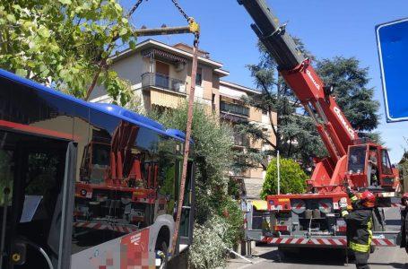 Firenze, incidente per un autobus di linea: intervenuti i Vigili del Fuoco