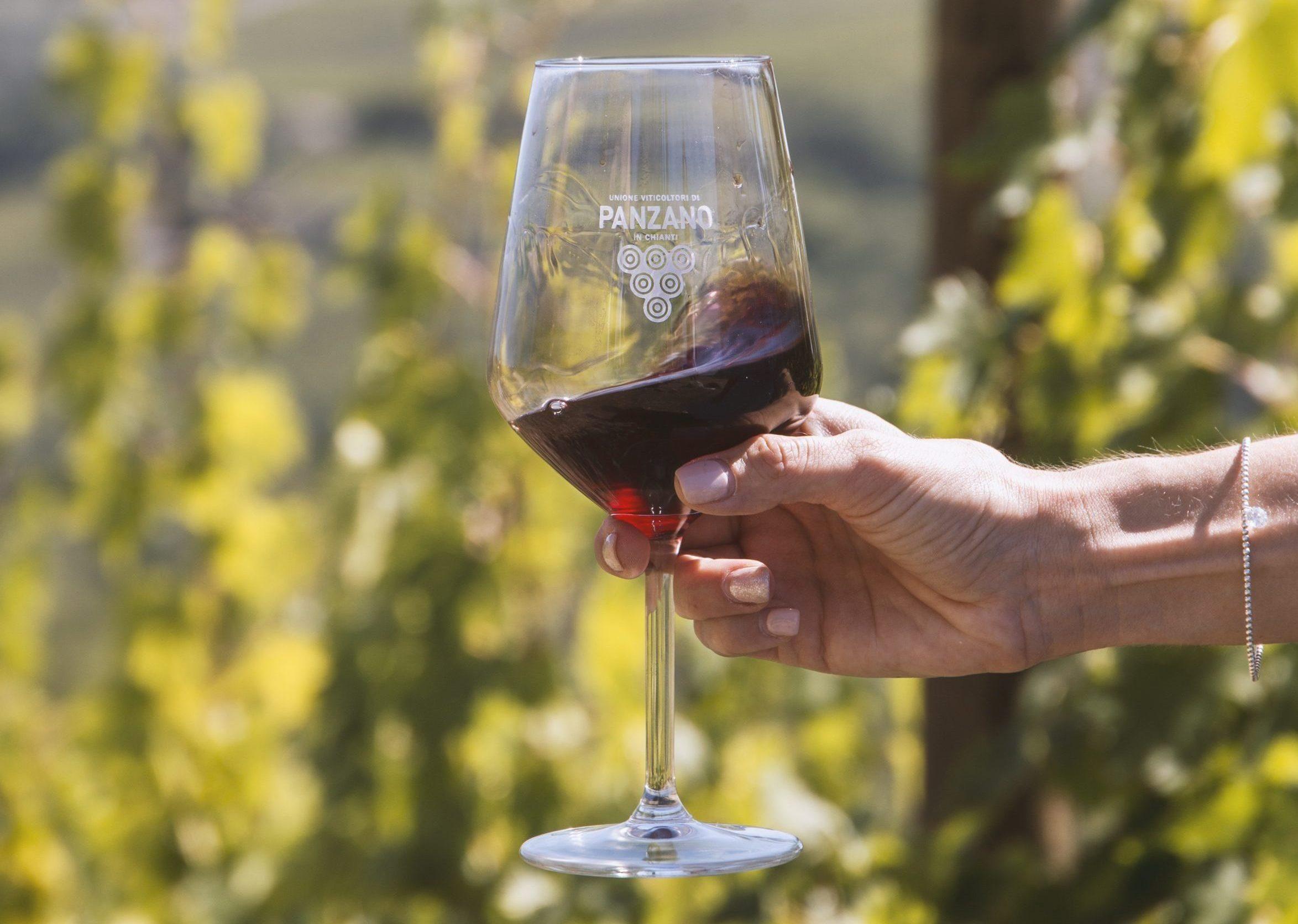 """""""Vino al Vino 2020"""", vivere la """"bio-territorialità"""": un'edizione speciale nelle aziende di Panzano in Chianti!"""