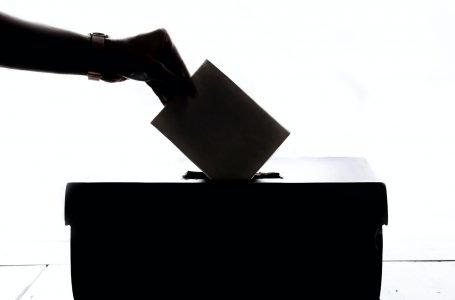 Referendum Costituzionale, SI o NO al taglio parlamentari: come hanno votato i nostri territori?