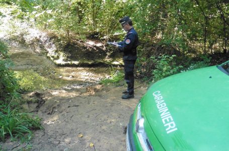 Impruneta, Carabinieri Forestali sequestrano un'area di scarico rifiuti speciali pericolosi